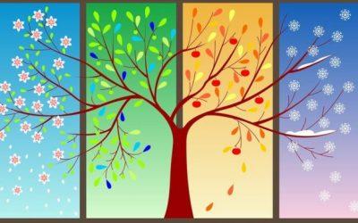 Dört Mevsim Kurye Hizmeti